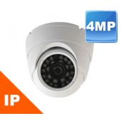 (IPS-420SDW) 4MP Vandal Eyeball Dome Indoor & Outdoor 3.6mm Lens 100FT in TOTAL DARKNESS
